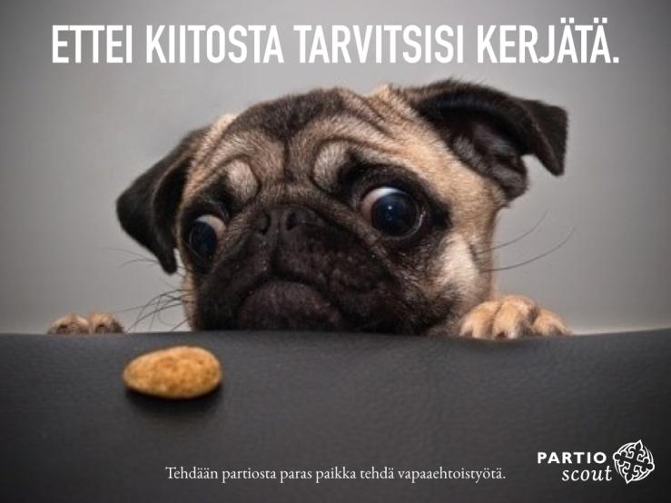 PARASVAPAAEHTOISTYÖ.001